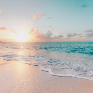 沖縄観光は車がないとダメ?その答えと理由を地元民がお答えします