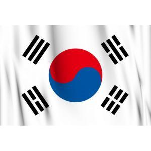 韓国の稚拙な政治