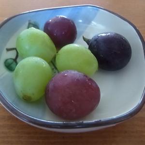 ぶどう美味しいですね~根本観光果樹園(茨城県常陸太田市)