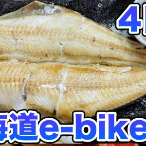 ウニを求めて北海道e-bike旅4日目【小樽〜大阪】さらば北海道