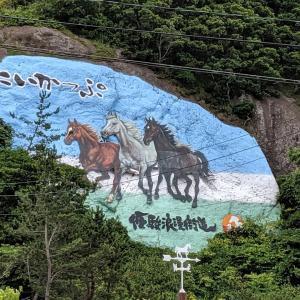 【LIVE旅行記】自転車で北海道一周16日目 えりも町〜日高町 追い風晴天気分良し!