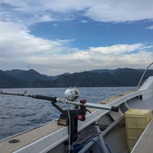 下田で初心者歓迎のクエ(モロコ)釣り。幻の高級魚を追うロマンを求めて!