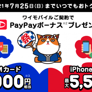 ワイモバイル SIMだけ契約 最大7000円還元キャンペーン PayPay祭り