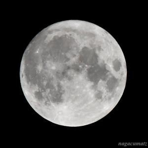 中秋の名月 月をめでて月を食す (10月1日'20)
