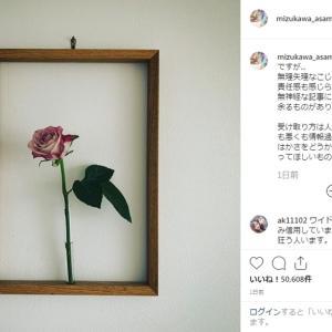 水川あさみ Instagram 苦言
