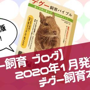 【33話】デグーの飼育本が発売されました!【デグー飼育 ブログ】