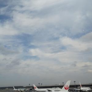 成田は青空が(≧∇≦)!幸せ空港ビールなうと、小さな事件と(笑)