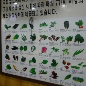 昨日、衝撃のこれを見て(@_@)!韓国語が難しいとか、もう絶対言うまいって心に決めたよ(笑)!