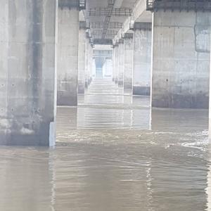 豪雨で大荒れの漢江。今朝6時、夜明けのソウルから、川岸リアルレポが届いたよ♪