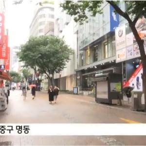 韓国、苦境の旅行会社の社長さんが始めたお仕事がすごい(≧▽≦)!勇気とパワーが伝わるよ!