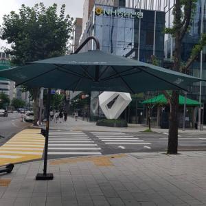 あの素敵な、街中の大きな日傘から見る今のソウル!癒されるわ~(///∇///)。