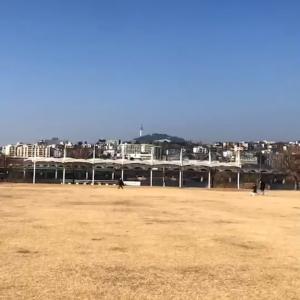 わあ、極上ソウルタワーだ~(*≧ω≦)!韓国大好きな大人女子のパワーチャージにぴったり~♪