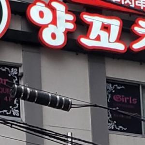 これぞ新大久保( *´艸`)!クラクラする誘い文句と韓国料理に後ろ髪を引かれまくり(笑)!