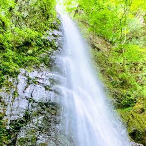 【川苔山】奥多摩で一番好きな山