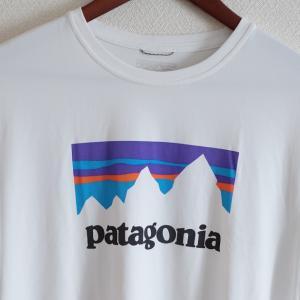 私のお気に入り山Tシャツ! パタゴニア「キャプリーン・クール・デイリー・グラフィック・シャツ」