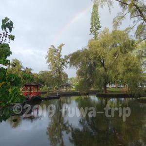 ヒロの早朝は虹が見える大チャンス!