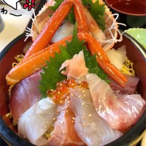 【鳥取 グルメ】境港で獲れた新鮮な海鮮丼&ウニ丼&甘~い!幻のもさえびチャンス★【お食事処かいがん】