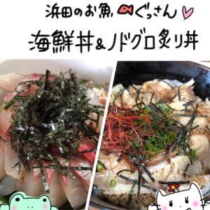 【島根 グルメ】浜田漁港前で食べる絶品のどぐろ炙り丼&新鮮海鮮丼【ぐっさん】
