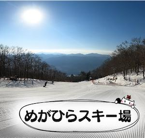 【めがひらスキー場】ピーカン!2021年1月21日ゲレンデレポ★