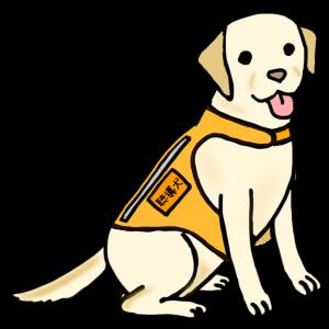 聴導犬(ちょうどうけん)って知っていますか? 音を知らせるお手伝いをする犬です。