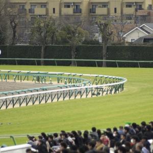 京成杯 & 日経新春杯2020予想 | 【3歳戦】競馬予想、無料で買い目を公開中