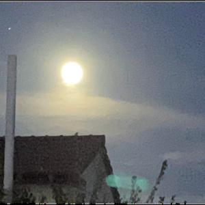 お口にチャックしたら、息子が奇麗なお月様に気付きました。