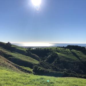 皆んなが思うニュージーランドの景色を堪能?Papamoa Hill Regional Parkとは?