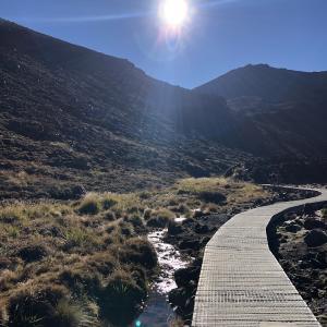 ニュージーランドの私が行ったトレッキング、散歩コースまとめ①