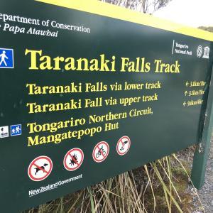 ここは地球なの??トンガリロを少し離れて見てみよう!Taranaki Falls TrackからTama Lakeへ①