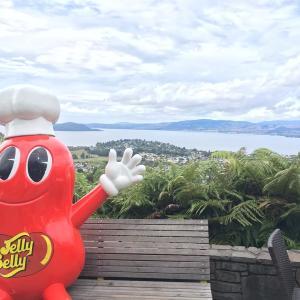 『Skyline Rotorua』はロトルアの街を一望できるスポット!アクティビティーも充実!
