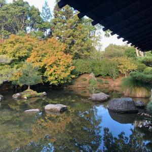 ハミルトンに日本庭園が!?様々な国の庭園を見ることが出来るんです!!