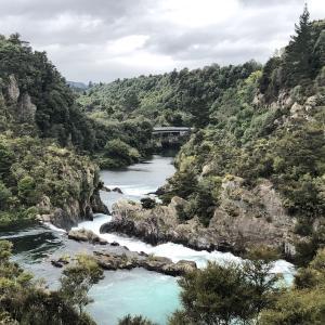 タウポの周りには素敵がいっぱい!少し離れた場所にあるあの滝は・・・フカフォール!