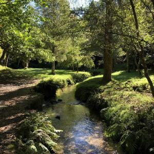 ニュージーランドのMclaren Falls Parkでのんびり過ごそう(´∀`)