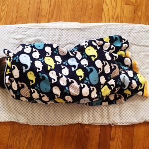 保育園の布団でお昼寝