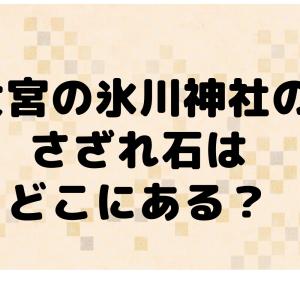 大宮の氷川神社のさざれ石はどこにある?