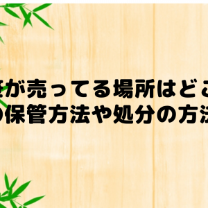 七夕の笹が売ってる場所は?笹の保管方法や終わった後の処分方法はどうすればいい?