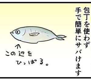 魚をサバきながら考える事