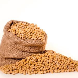 大豆は栄養素的にバランスの良い食材である。