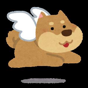 犬が死んだ