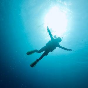 【ダイビング】オープンライセンス取得とアドバンスコース開始!