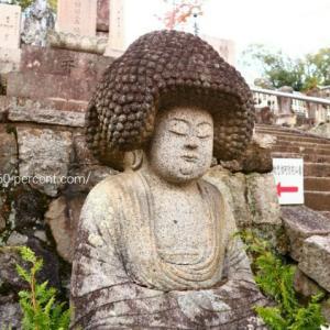 京都の庭園で癒される【金戒光明寺】新選組発祥の地にはアフロ大仏がいる