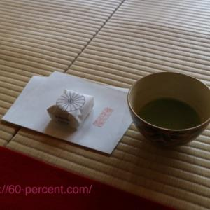 京都の庭園でお抹茶【青蓮院門跡】華頂殿から眺める華麗な庭