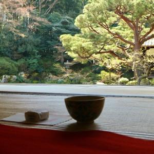 京都のお寺でドラマチックな一時を!庭園を見ながら頂くお抹茶オススメ5選