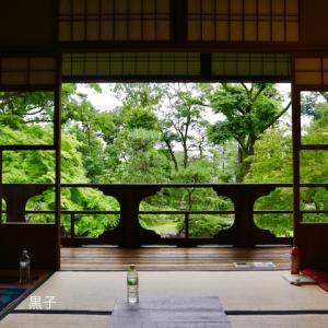 京都の庭園でヨガ【旧三井家下鴨別邸】通常非公開の部屋で心をほぐす