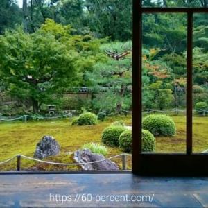 京都の非公開寺院でヨガ。身体が浄化されるような極上体験を|東福寺