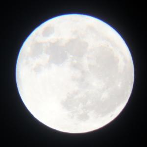 8歳誕生日プレゼントに天体望遠鏡セットがよかった!木星と土星も見える!★