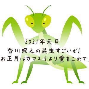 2021年元旦 9:00~「昆虫すごいぜ!」オオカマキリ拡大版!大晦日にクワガタ・セミ再放送