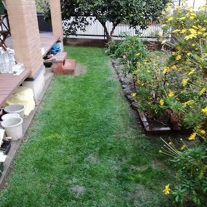 芝刈り、落葉堆肥