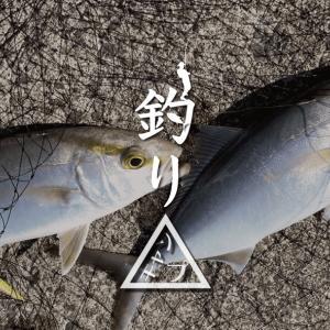 ジグサビキでショゴ(カンパチ)とサバがダブルHIT! 新島釣りキャンプ第二弾【DAY3 前半】