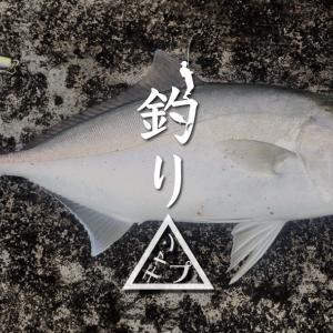 新島遠征最終日!出船までのルアー釣りでショゴ(カンパチ)GET 新島釣りキャンプ第二弾【DAY8】